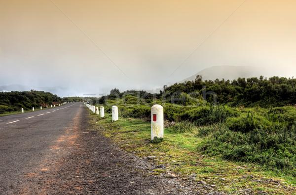 Yol plato doğal madeira ada Portekiz Stok fotoğraf © brozova