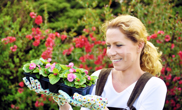 Woman with container-grown plants Stock photo © brozova