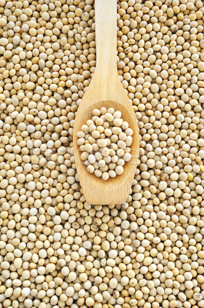 Wooden spoon and dried soybeans Stock photo © brozova