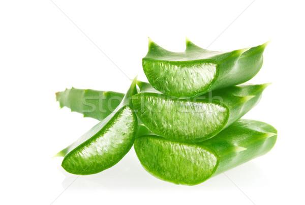 Vers sappig groene bladeren aloë geïsoleerd Stockfoto © brulove