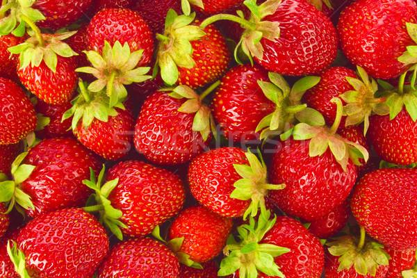 Organique ferme fraises juteuse feuilles vertes Photo stock © brulove