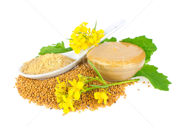 Seed, powder, flowers, leaves and ready mustard Stock photo © brulove