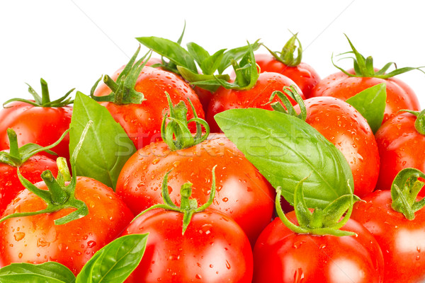 Fresh juicy organic tomatos and green leaves of basil Stock photo © brulove