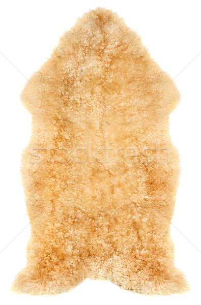 Сток-фото: овец · изолированный · белый · оранжевый · желтый · шерсти