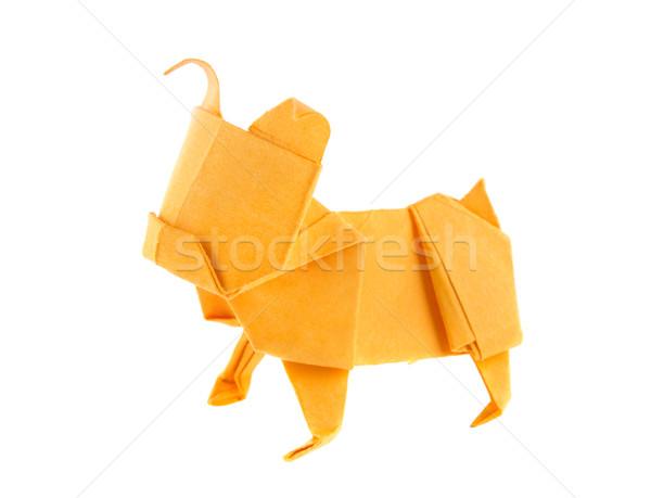 Naranja perro bulldog origami aislado blanco Foto stock © brulove