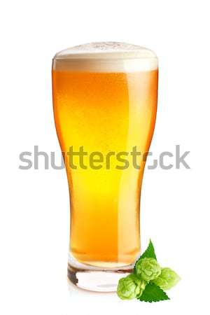 Goblet of fresh cold beer and organic hop with green leaves. Stock photo © brulove
