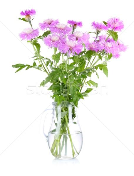 Bouquet fleur feuilles vertes verre isolé Photo stock © brulove