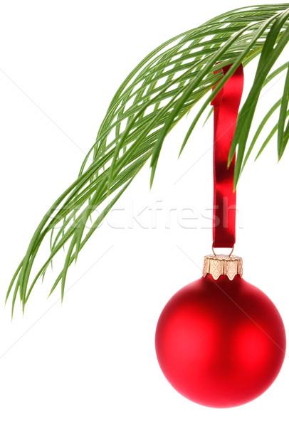 Noël décoration feuille de palmier isolé blanche fond Photo stock © brulove