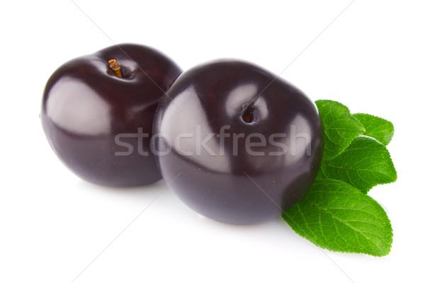 Fraîches juteuse organique prune feuille verte isolé Photo stock © brulove
