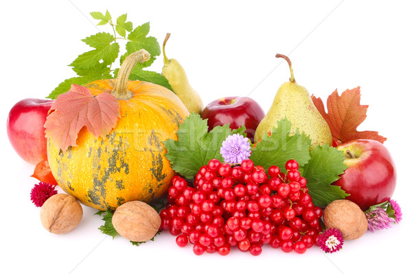 thanksgiving day still life Stock photo © brulove
