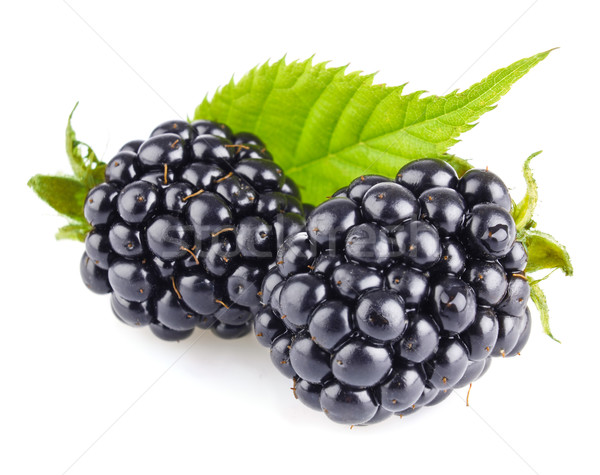 ripe blackberry with green leaves Stock photo © brulove