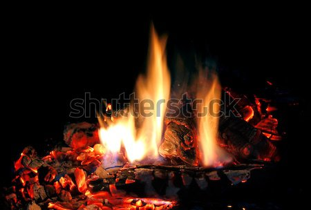 fire in fireplace Stock photo © brulove