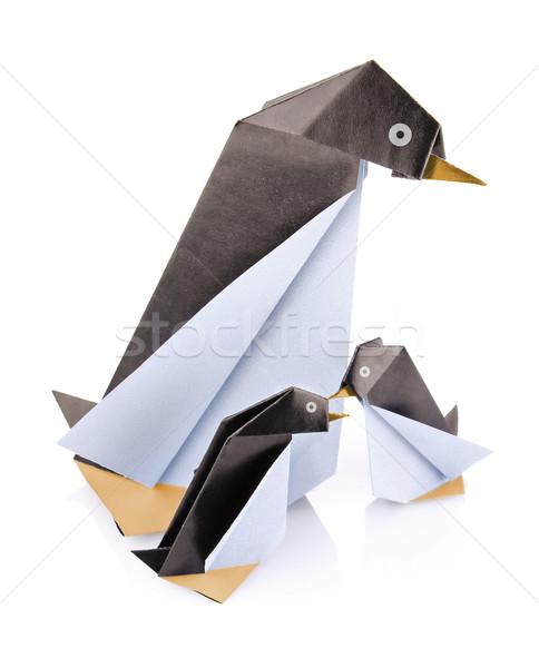 Aile penguen origami yalıtılmış beyaz kuş Stok fotoğraf © brulove