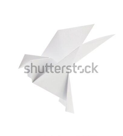 Branco pombo origami isolado fundo arte Foto stock © brulove