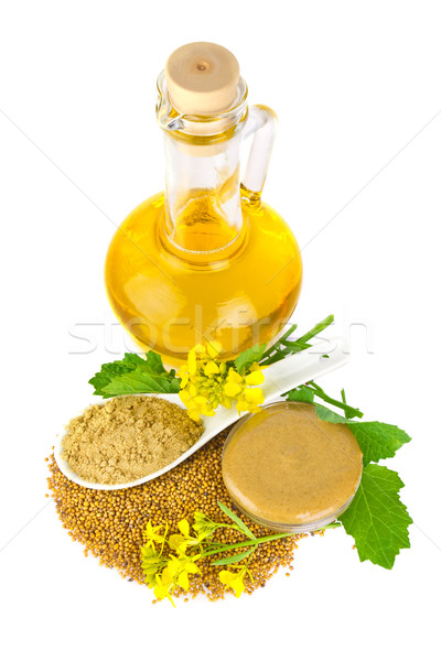Mustard   in various appearance Stock photo © brulove