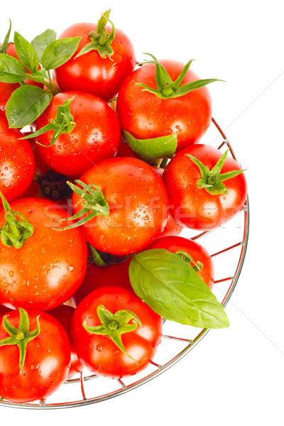 Fresh juicy organic tomatos and green leaf of basil Stock photo © brulove