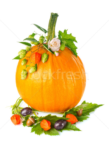 Thanksgiving day composition of pumpkin with fruit flower and  green leaf. Stock photo © brulove