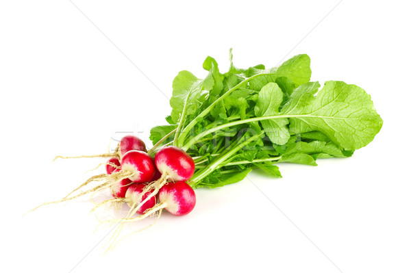 Fresh organic farm radishes with green leaves Stock photo © brulove