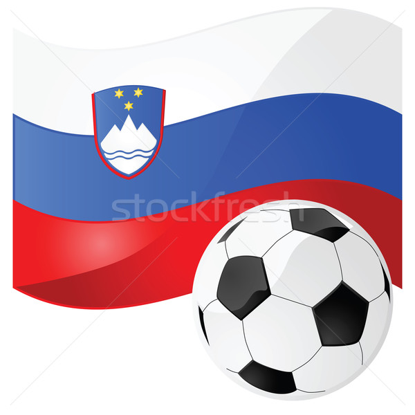 Slovenia calcio lucido illustrazione bandiera calcio Foto d'archivio © bruno1998