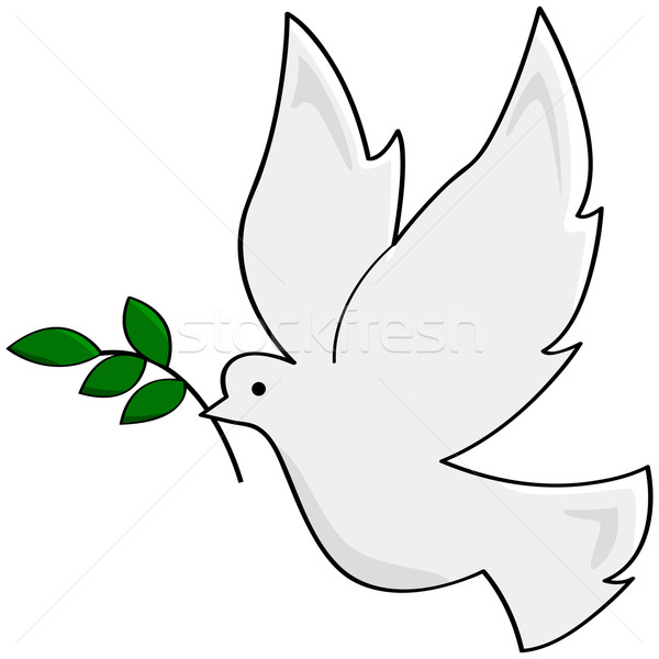 Béke galamb rajz illusztráció mutat fehér Stock fotó © bruno1998