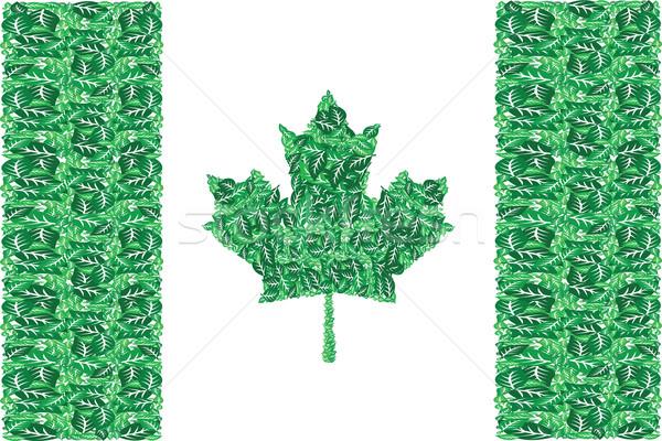 Vert Canada illustration drapeau canadien up arbre Photo stock © bruno1998
