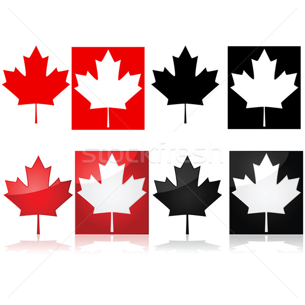 Canadian maple leaf Stock photo © bruno1998