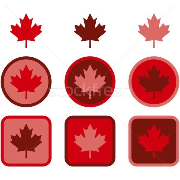 Maple leaf flat design Stock photo © bruno1998