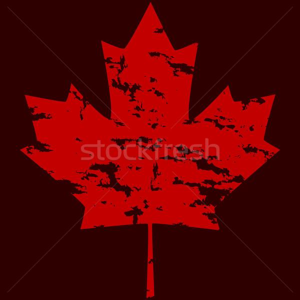 Grunge maple leaf Stock photo © bruno1998
