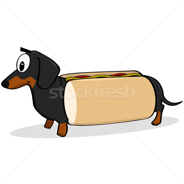 Hot dog cartoon illustratie tonen teckel hond Stockfoto © bruno1998