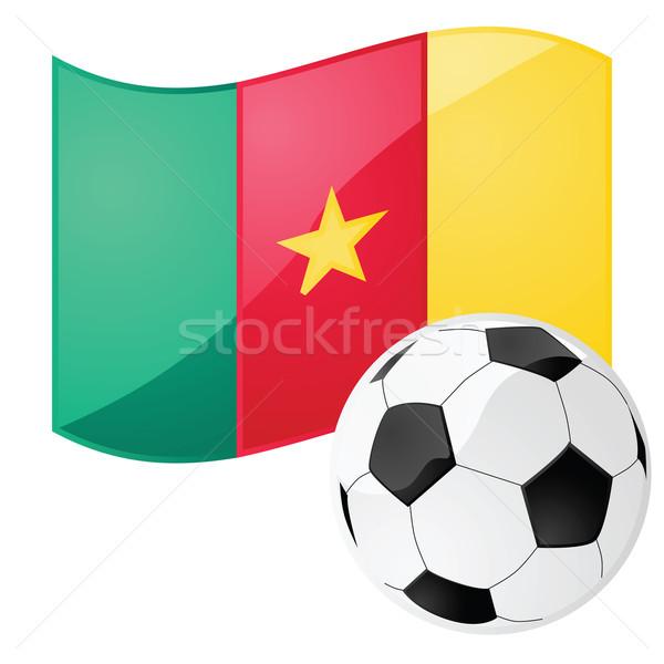 Kamerun piłka nożna ilustracja banderą piłka nożna Zdjęcia stock © bruno1998