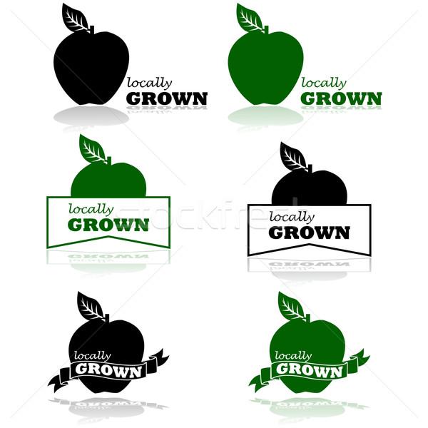 Megnőtt illusztráció mutat alma szavak háttér Stock fotó © bruno1998