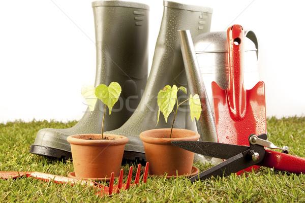 Stock photo: Gardening concept