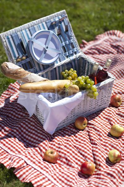 Picknick tijd vers voedsel mand tuin voorjaar Stockfoto © BrunoWeltmann