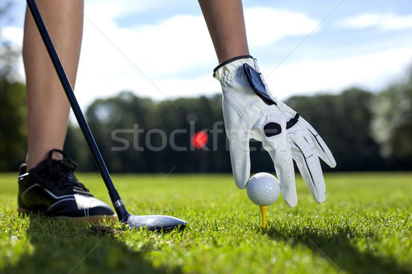 set golf ball on a peg Stock photo © BrunoWeltmann