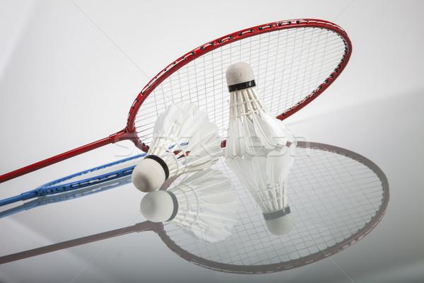 Zestaw badminton sportu świetle Pióro Zdjęcia stock © BrunoWeltmann