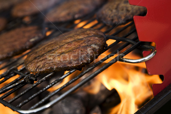 Grill time, Barbecue in the garden Stock photo © BrunoWeltmann