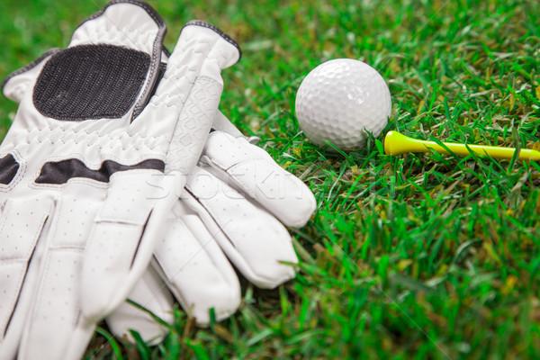 Let's play a round of golf! Stock photo © BrunoWeltmann