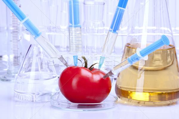 Genético pesquisa frutas natureza fruto medicina Foto stock © BrunoWeltmann