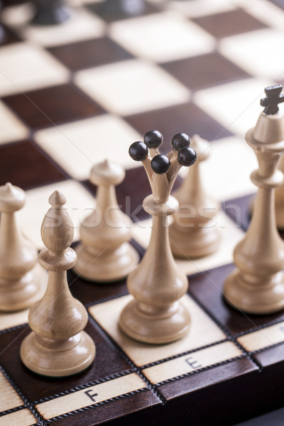 Chess pieces showing competition in business and sport Stock photo © BrunoWeltmann