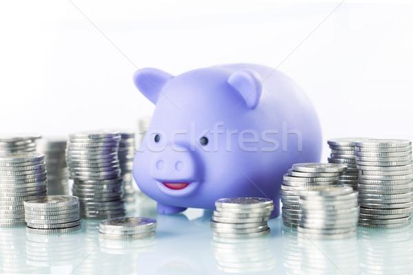 Spaargeld inkomsten financiële spaarvarken geld Stockfoto © BrunoWeltmann