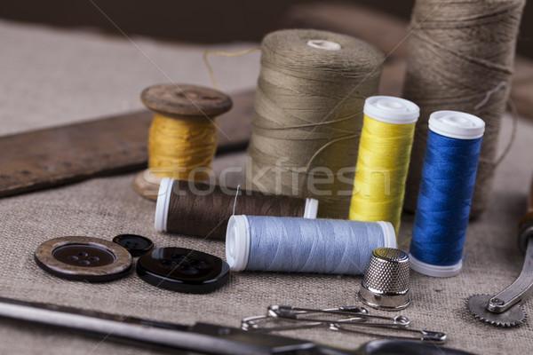 швейных хвоя студию фото работу Сток-фото © BrunoWeltmann