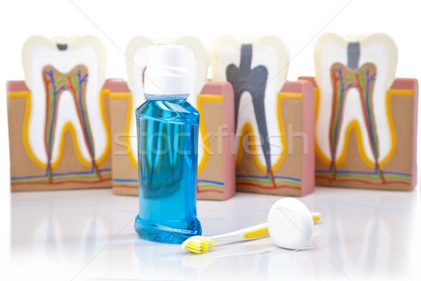 Dental equipment, teeth care Stock photo © BrunoWeltmann