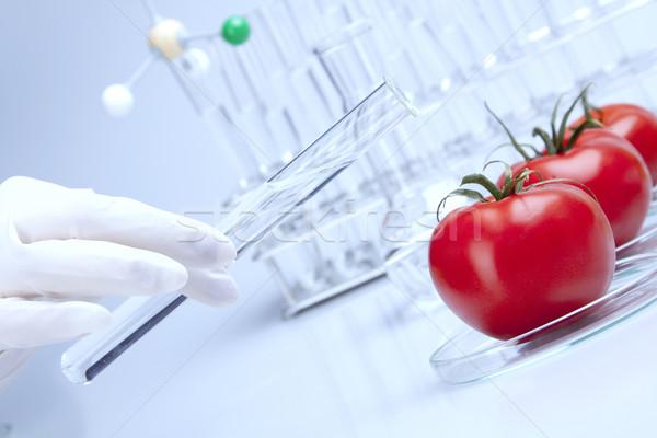 Genetik araştırma meyve meyve tıp laboratuvar Stok fotoğraf © BrunoWeltmann