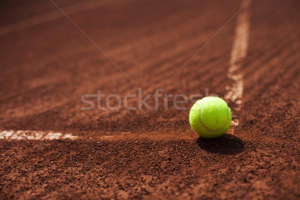теннисный мяч линия углу суд спорт области Сток-фото © BrunoWeltmann