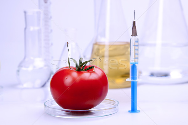 Genetik araştırma meyve doğa meyve tıp Stok fotoğraf © BrunoWeltmann