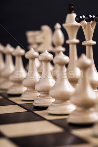 Sakkfigurák sakktábla mutat verseny üzlet játék Stock fotó © BrunoWeltmann