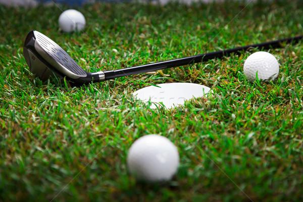 Сток-фото: играть · гольф · мяч · для · гольфа · зеленая · трава · трава