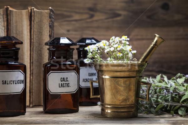 ősi természetes gyógymódok gyógynövények régi könyv virág fa Stock fotó © BrunoWeltmann