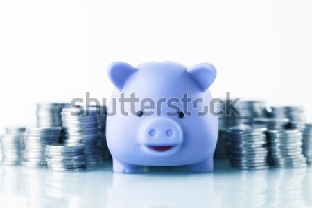Megtakarított pénz kereset pénzügyi persely köteg pénz Stock fotó © BrunoWeltmann