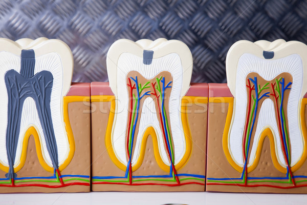 Attrezzature dentali denti care controllo studio ufficio Foto d'archivio © BrunoWeltmann
